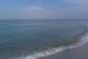 Beach Photo (08/23/10)