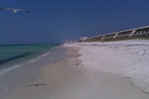Beach Photo (08/24/10)