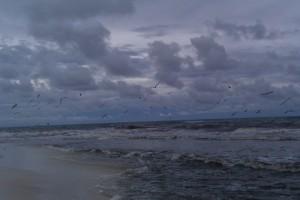 Beach Photo (08/29/10)