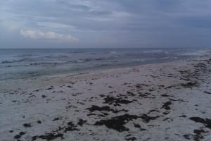 Beach Photo (08/30/10)