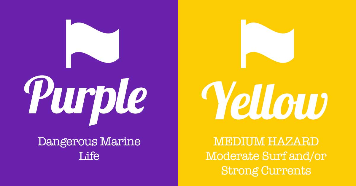 Panama City Beach Purple Yellow Flag Combo