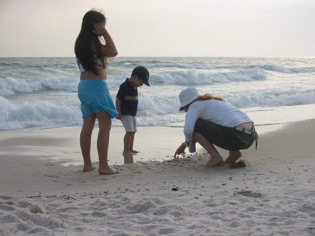 Picking Up Shells on West End PCB IMG_3514